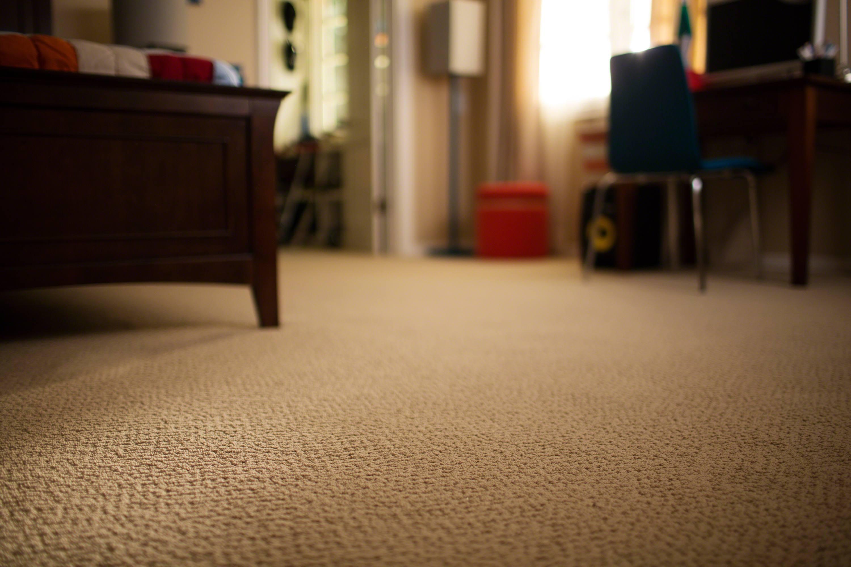 Shaw Fastball Carpet Floor Matttroy